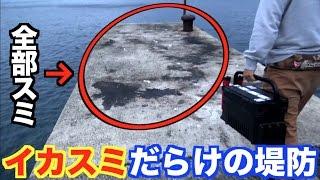 #1 釣りの聖地五島列島で巨大イカを釣りまくる!