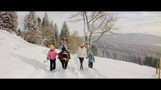 Winter Wonderland - Winter Wunderland - Deutsche Version des Weihnachtssongs von Iva Schell