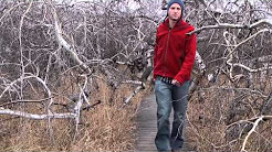 Visit a Haunted Grove in Saskatchewan