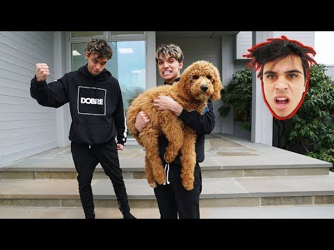 WE STOLE OUR BROTHER'S PUPPY!