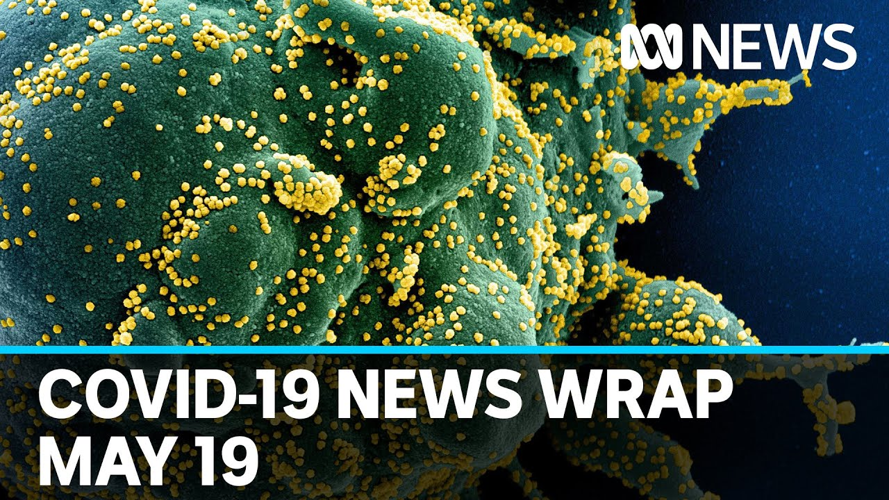 Coronavirus update: The latest COVID-19 news for Tuesday May 19   ABC News