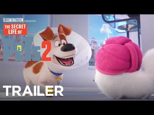 The Secret Life Of Pets 2 - The Busy Bee Trailer