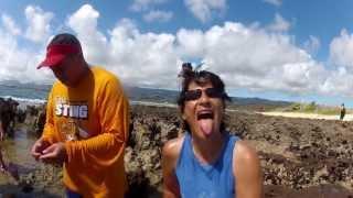 Goat Island - Born and Raised
