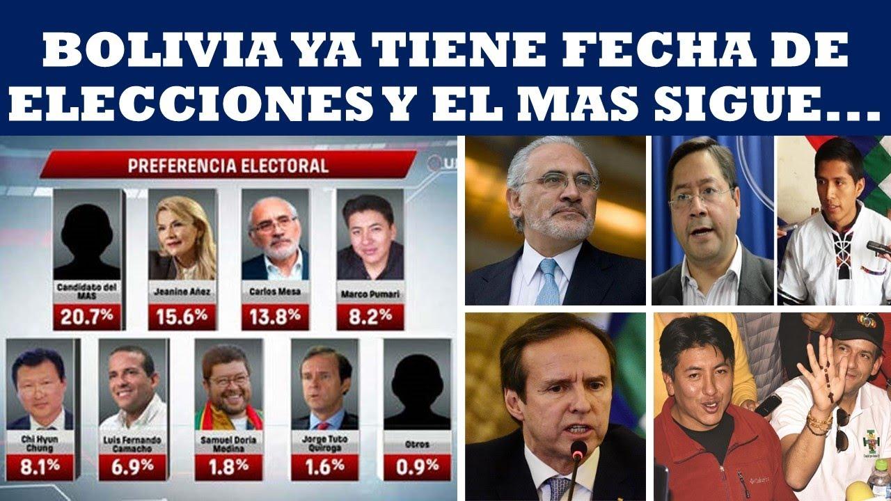 Resultado de imagen para elecciones 2020 bolivia