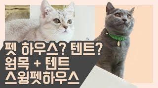 고양이텐트 고양이 원목하우스? 어떤걸할지 모르는 당신을…