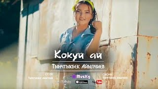 Тынчтыкбек Айылчиев - Кокуй ай / Жаны клип | MuzKg