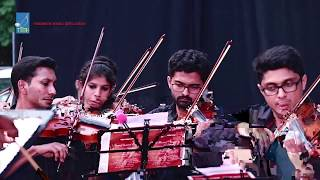 Beethoven's 9th Symphony ODE TO JOY by Euphony In Strings