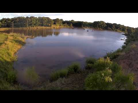 live-pond-weather-cam-located-in-jack-county-tx---live---hd-(pond-cam-16)