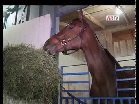 HRTV Profiles Untapable in the 2014 Haskell
