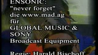 Ensonic: Never Forget