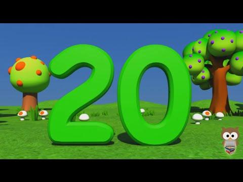 Sayılar | 1 den 20 e Kadar Türkçe Sayılar | 3D Animasyonlu Çocuk Şarkıları | Mini Baykuş