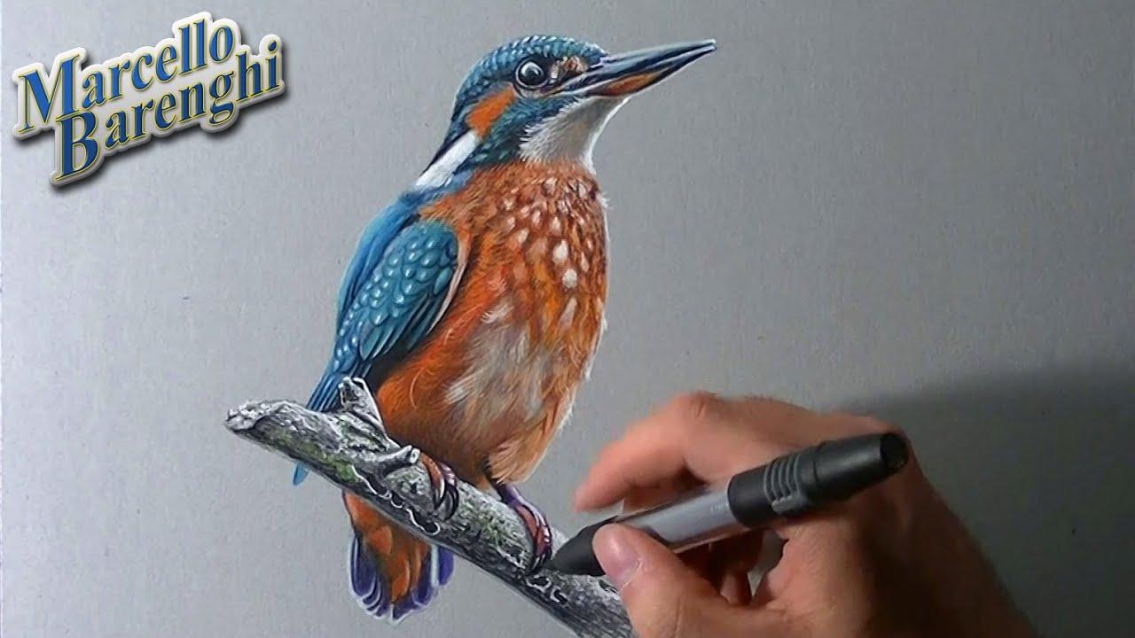 How To Draw Birds Youtube