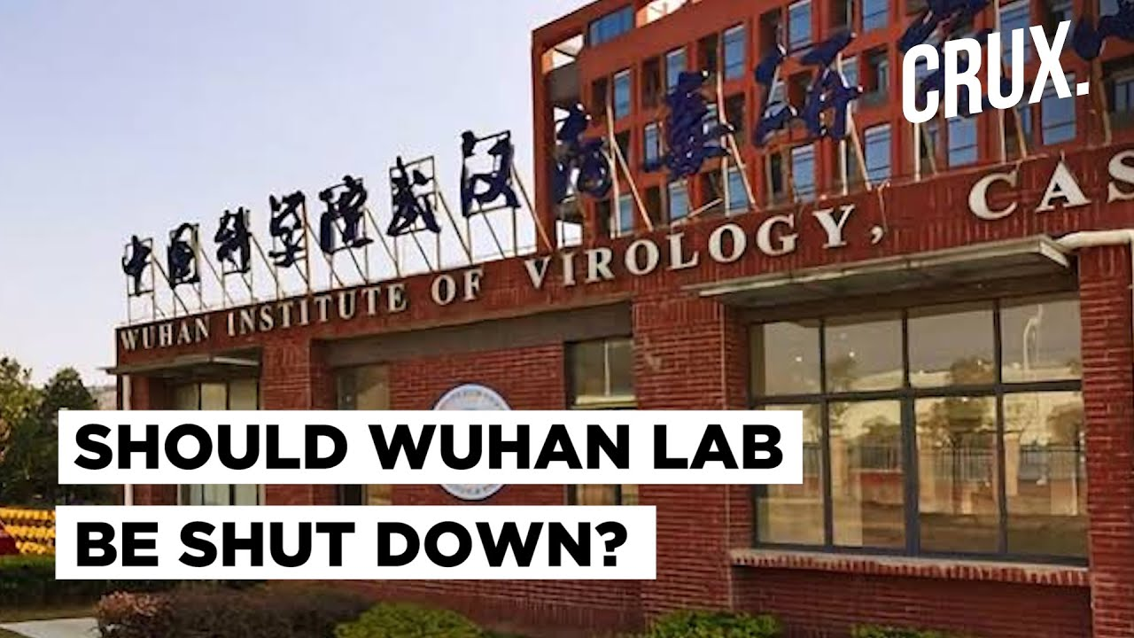 Download China's 'Bat Lady' Denies Theory That Covid-19 Was The Result Of A Lab Leak, But Can We Trust Her?