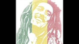 Dj Sunil - Bob Marley Remix