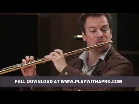 Flute lessons, Emmanuel Pahud, Schubert Theme and variations on Trockne Blumen