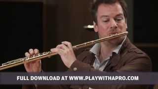 Flute lessons, Emmanuel Pahud, Schubert Theme and variations on Trockne Blumen