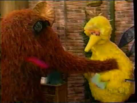 Sesame Street (#3874): Big Bird And Snuffy's Family Relationships