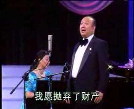Wu Yanze 吴雁泽 - In the faraway place 在那遥远的地方