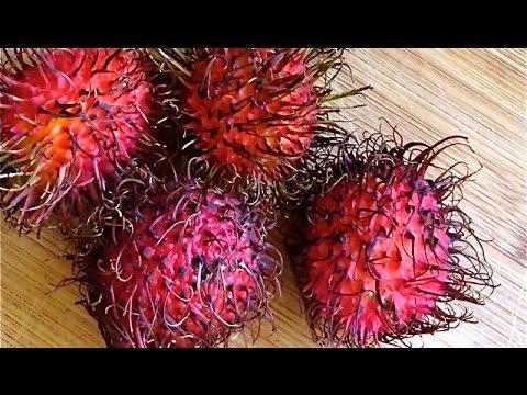 Rambutan -  Exotic Southeast Asian Fruit