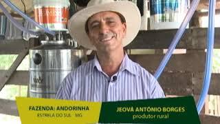 Fazenda Andorinhas - Estrela do Sul - MG - Jeová Antônio Borges - Produtor Rural
