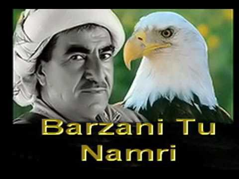 Hasan serif mzgin