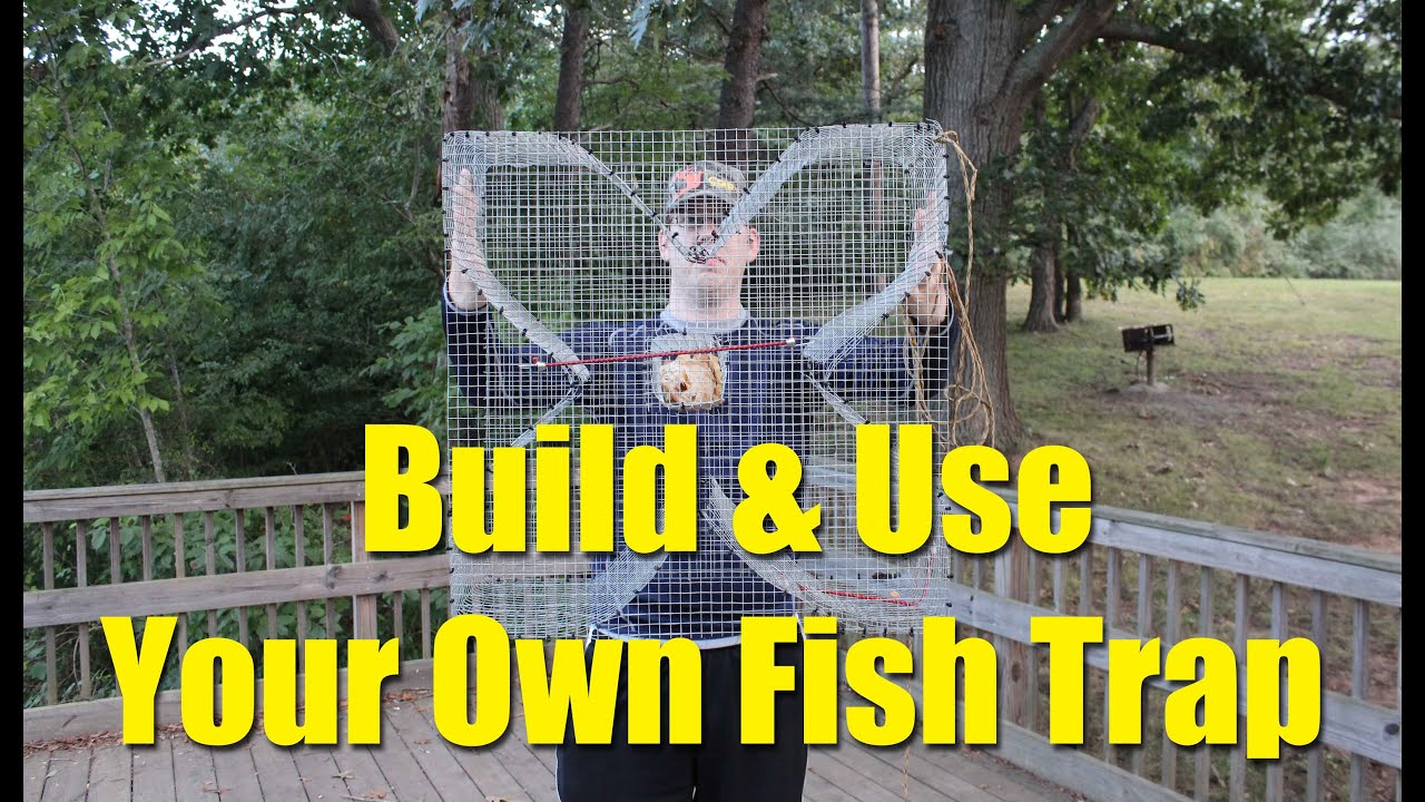 e40bec1f18391 How to build a fish trap - four leaf clover trap for blue gill and bream