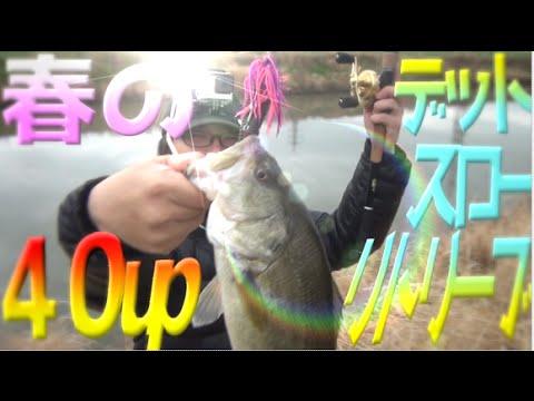 バス釣り PDチョッパー改アンモシャッドで40UP! - YouTube | 480 x 360 jpeg 25kB