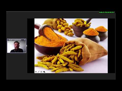 Turmeric - Ukon | Product & Business Overview 2017