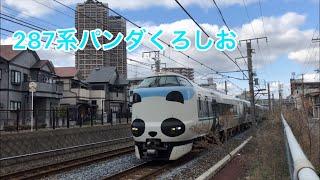 JR阪和線 287系パンダくろしお