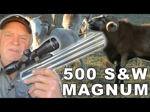 HAND CANNON HUNT For Exotic Animals | VLOG
