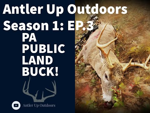 ANTLER UP SEASON 1: EP 3 DIMITRI'S PA PUBLIC LAND BUCK!!