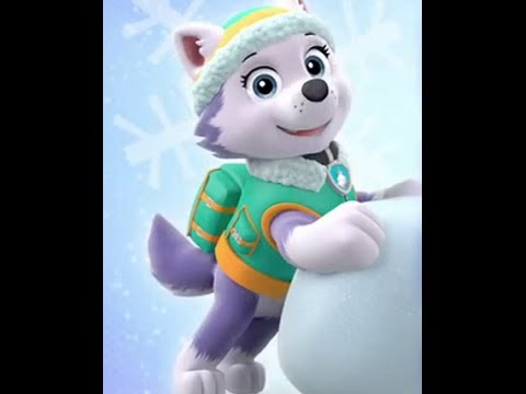 Paw Patrol Everest Tribute Only