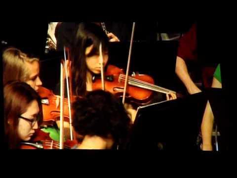 BYU Hawaii Chamber Orchestra