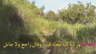 اللى تعبنا سنين فى هواك موسيقى كاريوكى مصر01224919053