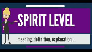 What is SPIRIT LEVEL? What does SPIRIT LEVEL mean? SPIRIT LEVEL meaning, definition & explanation
