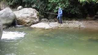 Quebrada en Porce, Antioquia, Colombia