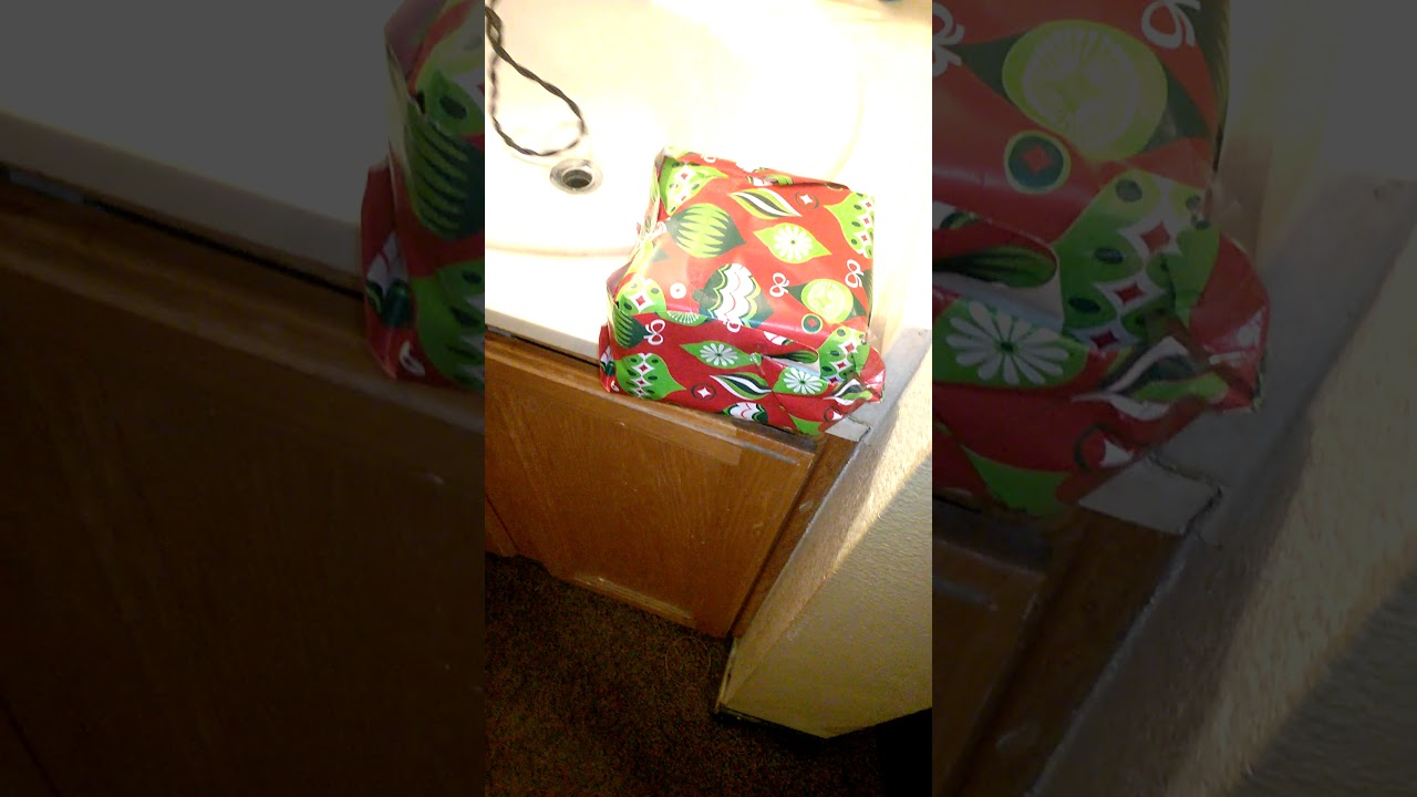 surprising my mom and little brother and little sister with early christmas gifts reactions