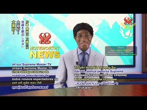 Supreme Master Television Live Stream   2018 11 11