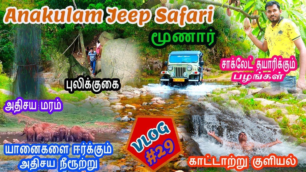 Vlog#29:Anakulam Jeep Safari - Tiger Cave |Cacao Tree| Viripara Waterfall |Karadipara View Point