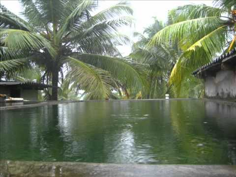 Padval Agriculture and Farm Enterprises, Mangalore India