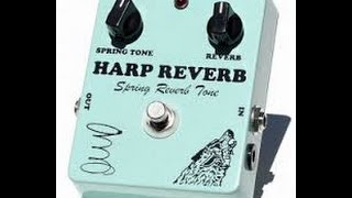 """Harp Reverb"", Lone Wolf Blues Company : Ricci Review"