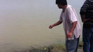 Fishing In Pakistan At River Satluj 1