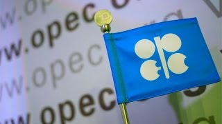 U.S. Energy Revolution: Does OPEC Matter?