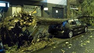 KRANKES Unwetter in Düsseldorf entwurzelt Bäume (09.06.2014)