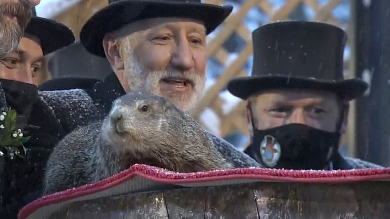 Groundhog Day 2021: Punxsutawney Phil sees his shadow