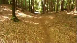 Vertride Opferholz-Camping Reichmann.wmv