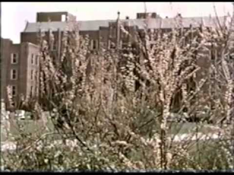Leila Hospital - Battle Creek ca 1940