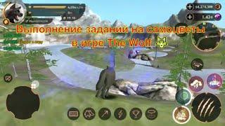 Выполнение заданий на самоцветы в игре The Wolf
