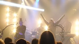 Diary of Dreams - The Luxury of Insanity (live 2014)
