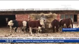 ЛПХ растут до крестьянско-фермерских хозяйств